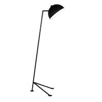CF5366 | Floor Lamp