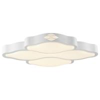 CC5498| LED Ceiling Fixture