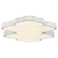 CC5500| LED Ceiling Fixture